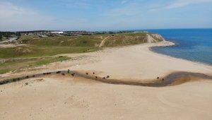 Kısırkaya Plajı ineklere ve mandalara kaldı
