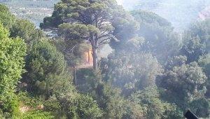 Kuşadası'ndaki orman yangını kontrol altına alındı