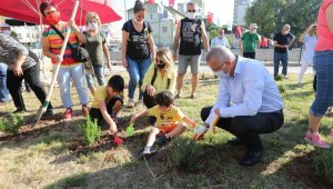 Mezitli'de Çevre Haftası'nda fidan dikildi