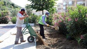 Mudanya'da yaz temizliği devam ediyor - Bursa Haberleri