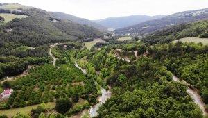 Samsun'a kurulacak 'Şifa Ormanı' Orta Doğu'da tek olacak