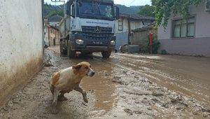 Selin vurduğu Dudaklı Mahallesi hayalet köye döndü - Bursa Haberleri