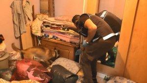 Trakya'daki 3 ilde eş zamanlı uyuşturucu operasyonu: 8 kişi tutuklandı