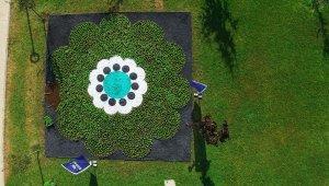 'Srebrenica Çiçeği' yeniden hayat buluyor - Bursa Haberleri