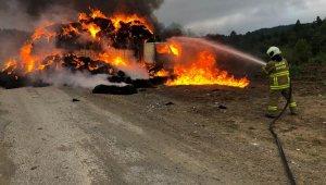 Balıkesir'de saman yüklü kamyon yangında kül oldu