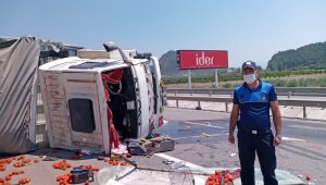 Bilecik'te kamyon devrildi, araca yüklü domatesler yola saçıldı