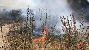 Bursa'da anız yangınları tehlike saçıyor - Bursa Haberleri