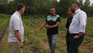Büyükşehir çiftçinin yanında - Bursa Haberleri