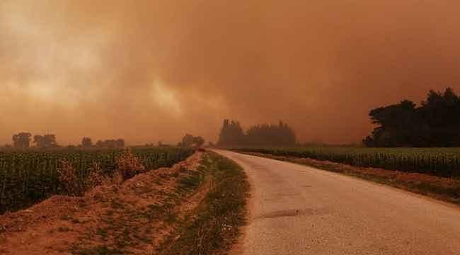 Çanakkale'deki orman yangını yaşanan köy tahliye ediliyor