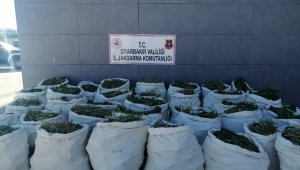 Diyarbakır'da terörün finans kaynağına büyük darbe