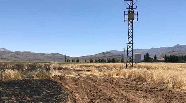 Elektrik teline çarpan karga buğday tarlasını yaktı