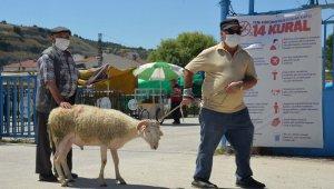 Hayvan pazarında son gün yoğunluğu yaşanıyor