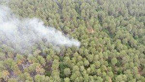 İstanbul'da 15 dekar orman yandı