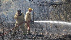 İzmir'de korkutan orman yangını ile ilgili bir şüpheli gözaltına alındı