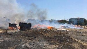 İzmir'de korkutan otluk alan yangını