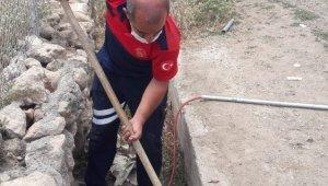 Köprünün içinde mahsur kalan köpeği itfaiye ekipleri kurtardı