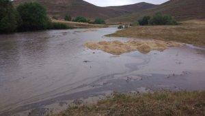 Malazgirt'te sel felaketi: 20 hayvan telef oldu, 30 hayvan kayıp