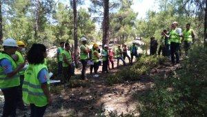 Mersin Orman Bölge Müdürlüğünden Mut'ta üretim tatbikatı