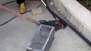OSB'de ki fabrikada yılan paniği