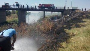 Otomobilden atılan izmarit yangın çıkardı