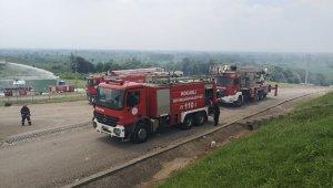 Sakarya'daki yangına Kocaeli İtfaiyesi'nden destek