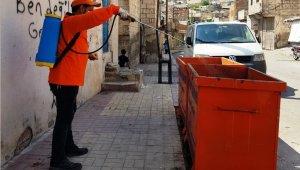 Şanlıurfa'da haşeratla mücadele sürüyor