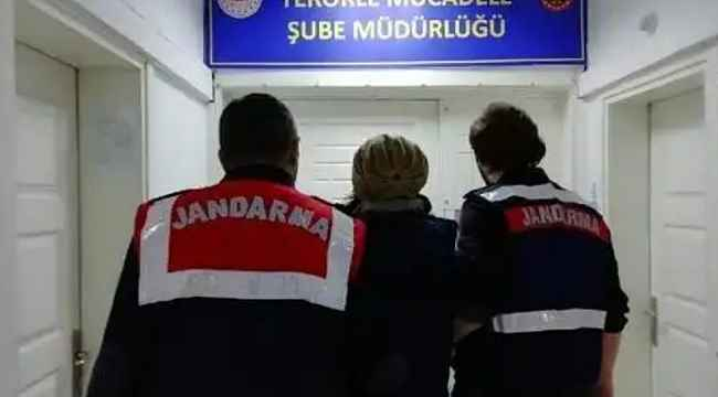 Terör örgütü operasyonunda Roma sikkeleri ele geçirildi - Bursa Haberleri