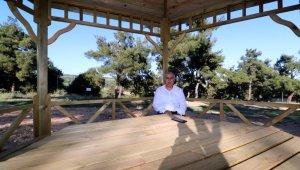 Türkiye'nin en güzel çamlığında düzenleme çalışmaları başladı - Bursa Haberleri