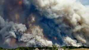 Ukrayna'da korkutan orman yangını: 4 ölü