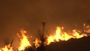 Bakan Pakdemirli yangın bölgesinde