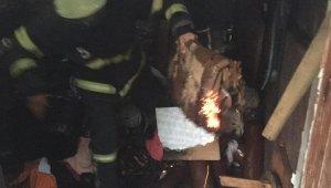 Barınakta yangın 2 yaralı
