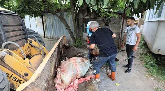 Başiskele'de kurban atıkları anında toplanıyor