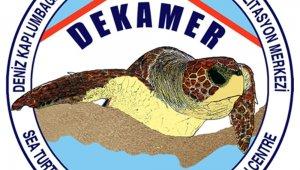 DEKAMER'den Caretta Caretta açıklaması