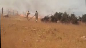 Gercüş'te 500 dönüm tarım arazisi yandı