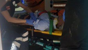 İncir ağacından düşen kişi yaralandı