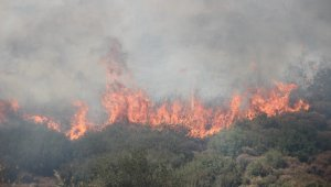 İzmir'deki yangınların ardından itfaiye personellerinin izinleri kaldırıldı