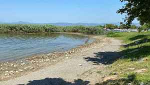 İznik Gölü'nde korkutan görüntü - Bursa Haberleri