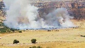 Kızıltepe'de 500 dönümlük ağaçlık alanda çıkın yangın gece boyunca devam etti