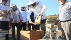 Kütahya'da 250 ton bal üretimi hedefleniyor