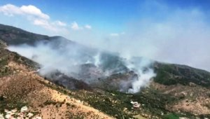 Milas'taki orman yangınına müdahale sürüyor