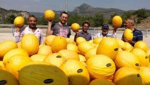 Osmaneli tarımda yaptığı yatırımlarının sonucunu alıyor