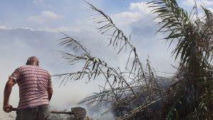 Samandağ'da sazlık yangını
