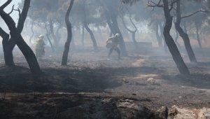 Yangın için polis ve vatandaşlar kovalarla seferber oldu