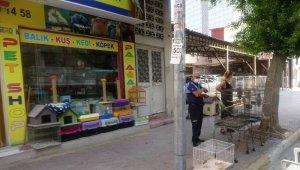 Akdeniz ilçesinde pet shoplar denetlendi