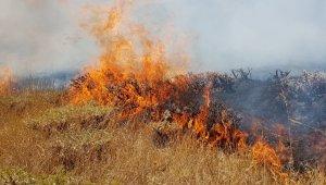 Aşkale'de makilik alanda yangın