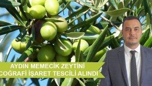 ATB, Aydın Memecik Zeytini Coğrafi İşaret Tescili'ni aldı