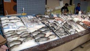 Av sezonu açıldı, tezgahlar balıkla doldu