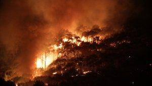 Ayvalık'ta rüzgar hızını azalttı ancak yangın hala kontrol altına alınamadı