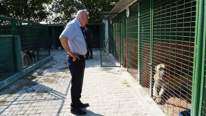 Başkan Kanar'dan ''hayvan mezarlığı'' sözü - Bursa Haberleri