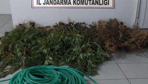 Biga'da uyuşturucu operasyonu